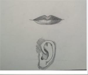 orecchie e boca